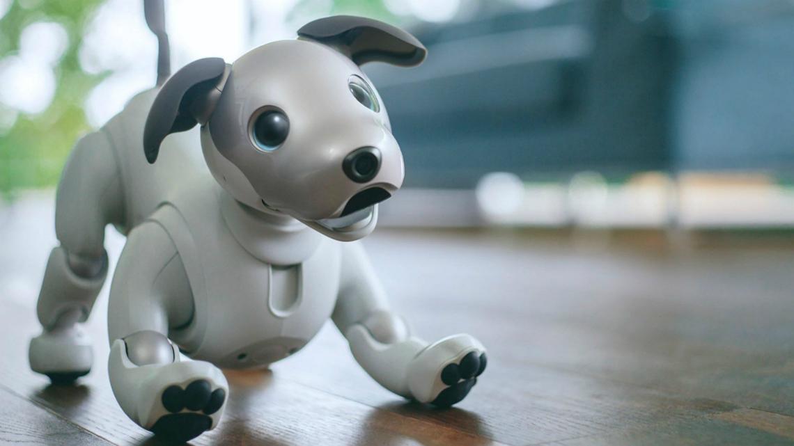 Срещу $3000 куче-робот пази дома денонощно