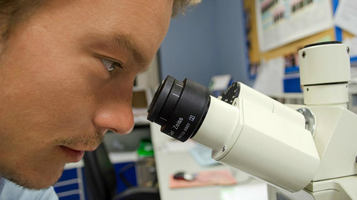 Каква е причината за лошото качество на спермата?