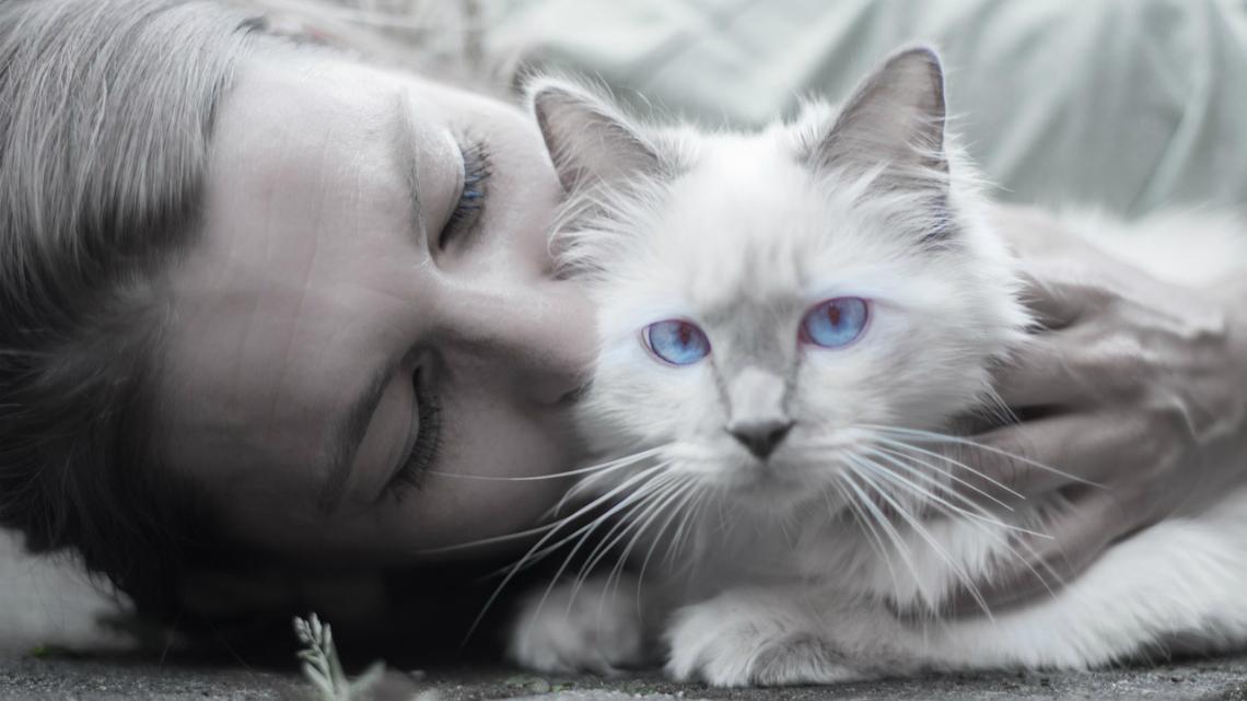 Самотна и с котка = най-добрата съпруга