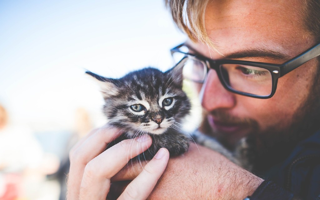 Мъж с котка - провал с жените