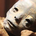 Откриха бременна египетска мумия в... Полша