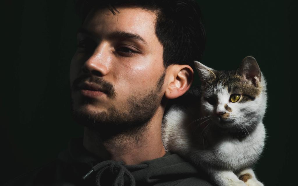 Съвети за по-добър живот с котка под покрива
