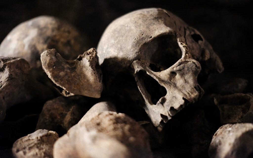 """""""Изкуствена"""" ли е била чумната пандемия от Средновековието?"""